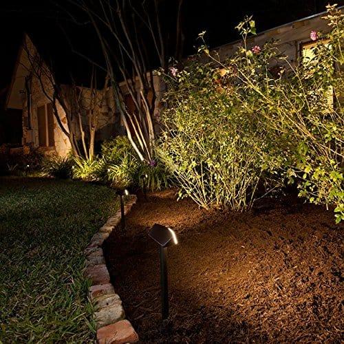 Lighting your Plants - landscape lighting ideas