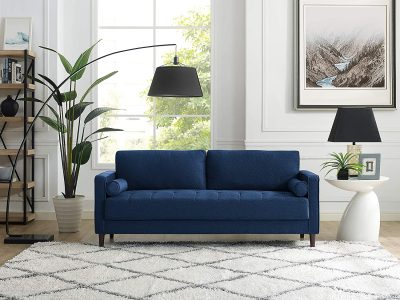 Color Rug Goes with a Blue Couch