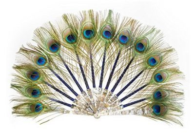 LUXURY PEACOCK HAND FAN BY DUVELLEROY