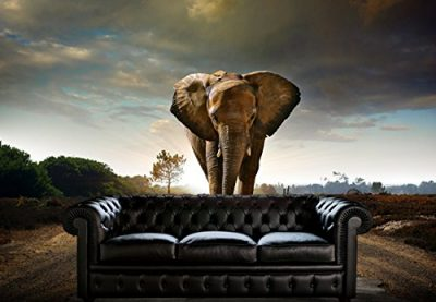 Lone Elephant Wall Mural Covering Removable Interior Decor