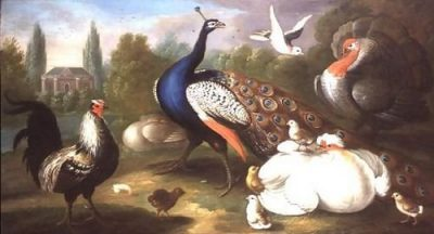 Marmaduke Craddock A Peacock, Turkey, Hen, Cockerel and Dove by a River 134x72