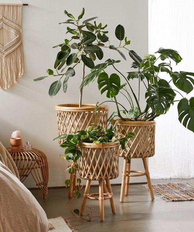 Bedroom with Rattan Standing Planter 20+ Aesthetic Bedrooms