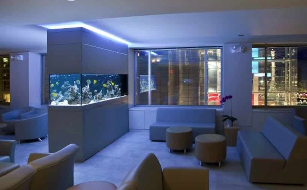 aquarium divider