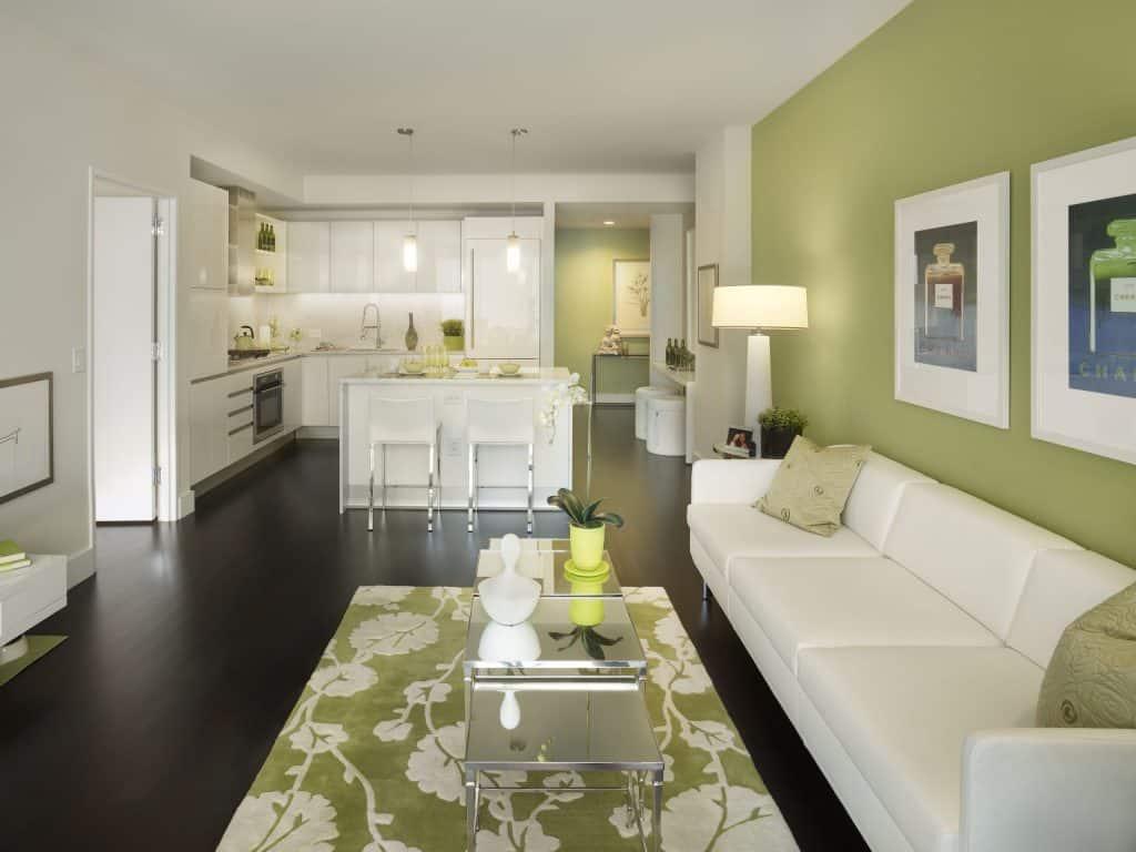 dark hardwood floors with colorful rug
