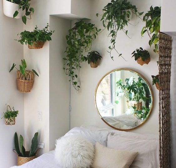Bedroom with more plants 20+ Aesthetic Bedrooms