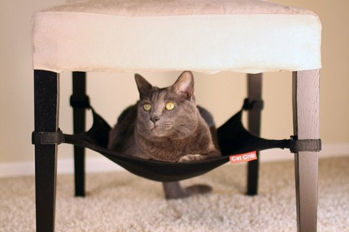 under chair cat hammock